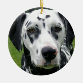 Dalmation Dog Dollys Face Christmas Ornament