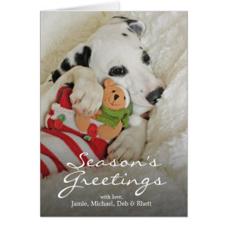 Dalmation puppy with Christmas Stocking Card
