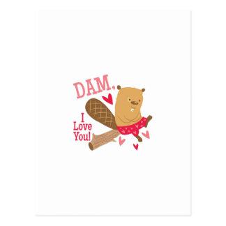 Dam I Love You Postcard