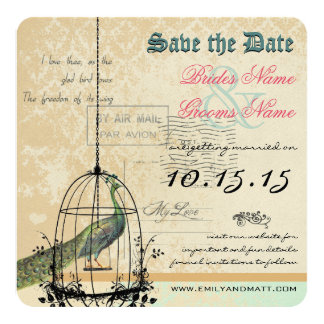 Damask Peacock Bird Cage Wedding Save the Date Card