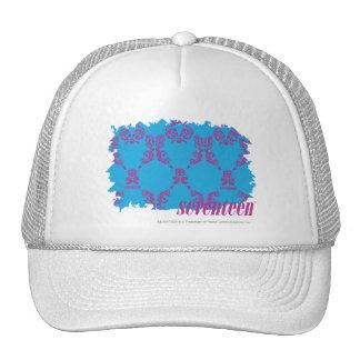 Damask Purple-Aqua 4 Cap