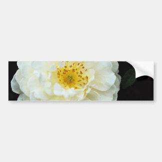 Damask White flowers Bumper Sticker