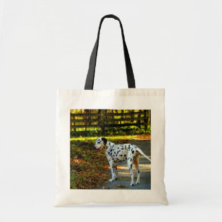 DAMATIAN GOES FOR A WALK BUDGET TOTE BAG