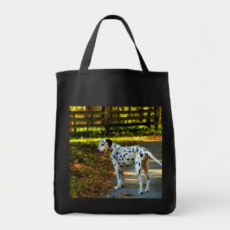 DAMATIAN GOES FOR A WALK GROCERY TOTE BAG