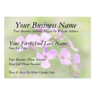 Dame's Rocket - Hesperis matronalis Pack Of Chubby Business Cards