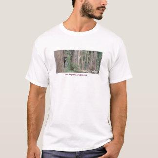 Dampsquid bison shirt