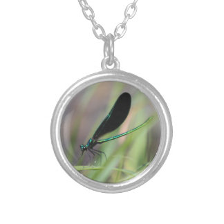 Damsel Fly Silver Plated Necklace
