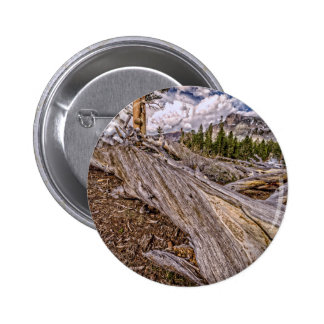 Dana Meadows View Pins