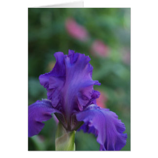 Dance of the Purple Iris Greeting Card