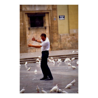 Dances with Pigeons Poster