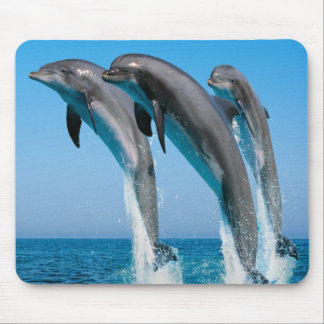 Dancing dolphins mouse mat