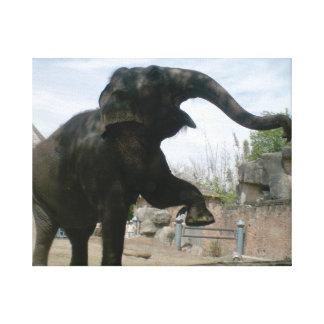 Dancing Elephant Gallery Wrap Canvas