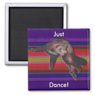 Dancing Ferret Refrigerator Magnets