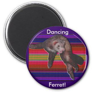 Dancing Ferret Fridge Magnets