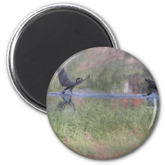 Dancing geese 6 cm round magnet