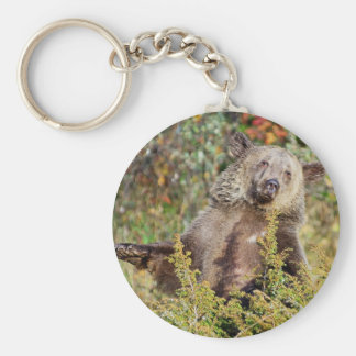 Dancing Grizzly Bear Key Chains