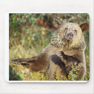 Dancing Grizzly Bear Mousepad
