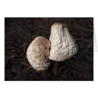 Dancing Mushrooms Duo Greeting Card