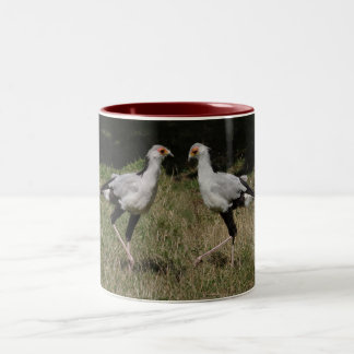 Dancing secretary birds mug