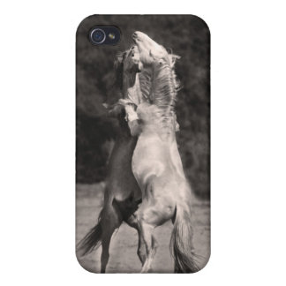 Dancing Stallions iPhone 4 Cases