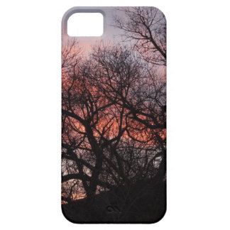 Dancing Tree Skeletons at Sunset iPhone 5 Cases
