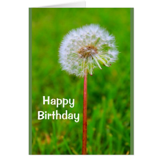 Dande Birthday I'm Not Lion Card