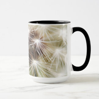 Dandelion 2012 the coffee cup
