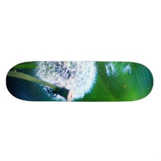 Dandelion 20.6 Cm Skateboard Deck