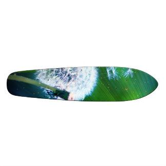 Dandelion 21.3 Cm Mini Skateboard Deck