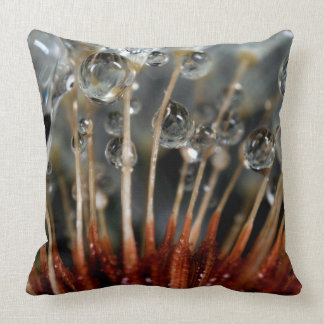 Dandelion and water drops, CA Throw Pillow