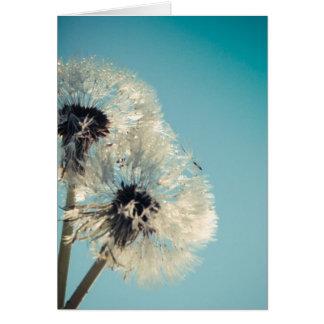 Dandelion Blue Sky Greeting Card