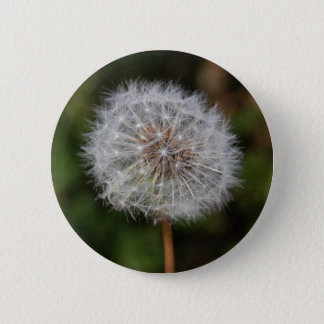 Dandelion Clock / Fluffy Parachutes 6 Cm Round Badge