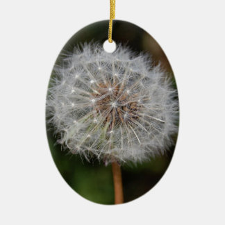 Dandelion Clock / Fluffy Parachutes Christmas Ornament