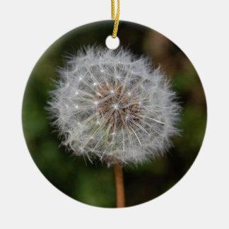 Dandelion Clock / Fluffy Parachutes Christmas Ornament