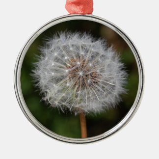 Dandelion Clock / Fluffy Parachutes Silver-Colored Round Decoration