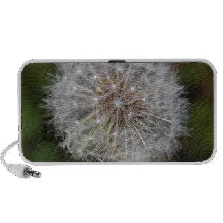 Dandelion Clock Fluffy Parachutes iPod Speakers