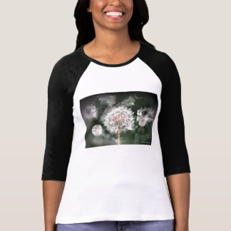 Dandelion Clock on Ladies Raglan Top