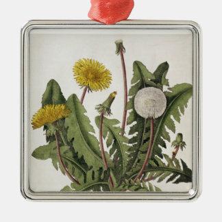 Dandelion (colour engraving) christmas ornament