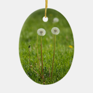 Dandelion Duo Christmas Ornament