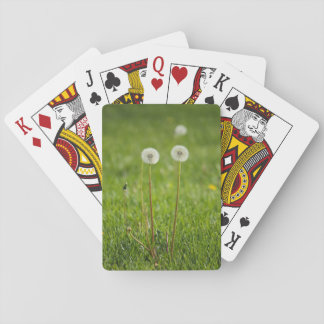 Dandelion Duo Playing Cards