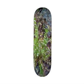 dandelion edited photo skateboard decks