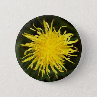 Dandelion Flower 6 Cm Round Badge