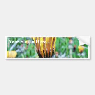 Dandelion Flower Almost In Bloom Car Bumper Sticker