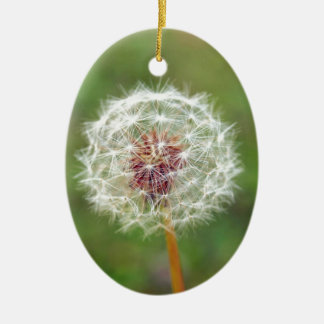 Dandelion flower christmas ornament