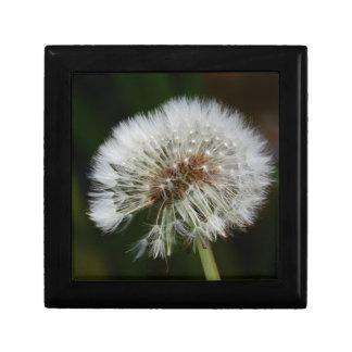 Dandelion Flower Gift Box