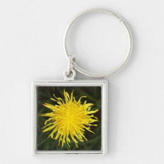 Dandelion Flower Key Ring