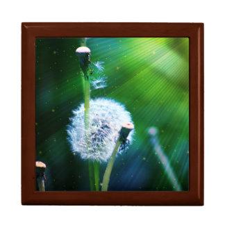 Dandelion Large Square Gift Box