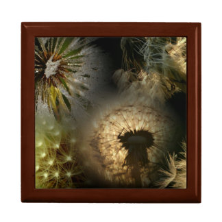 Dandelion Large Square Gift Box