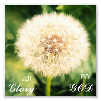 Dandelion Glory Photo Print
