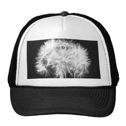 Dandelion Hat